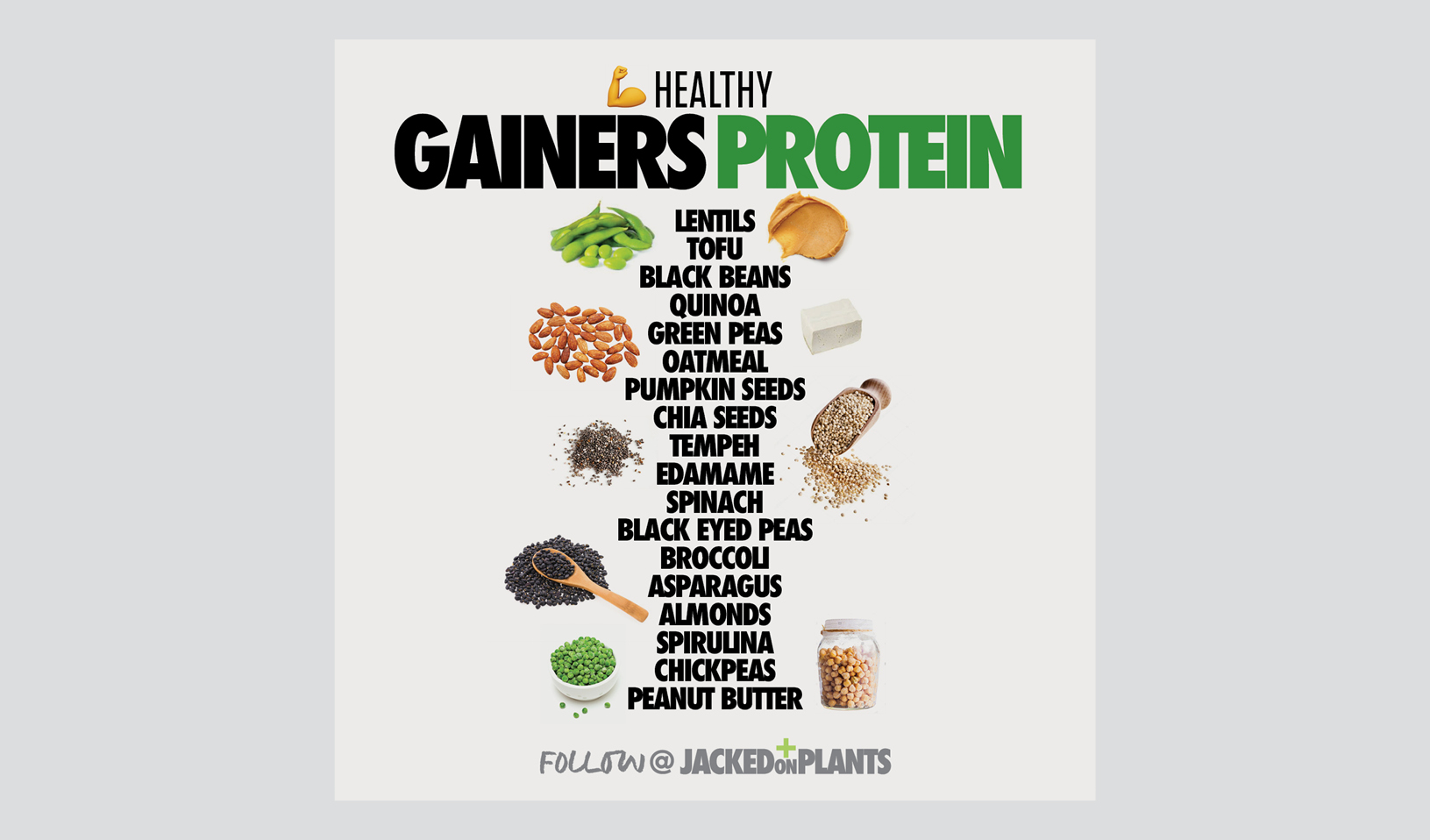 Healthy plant based protein