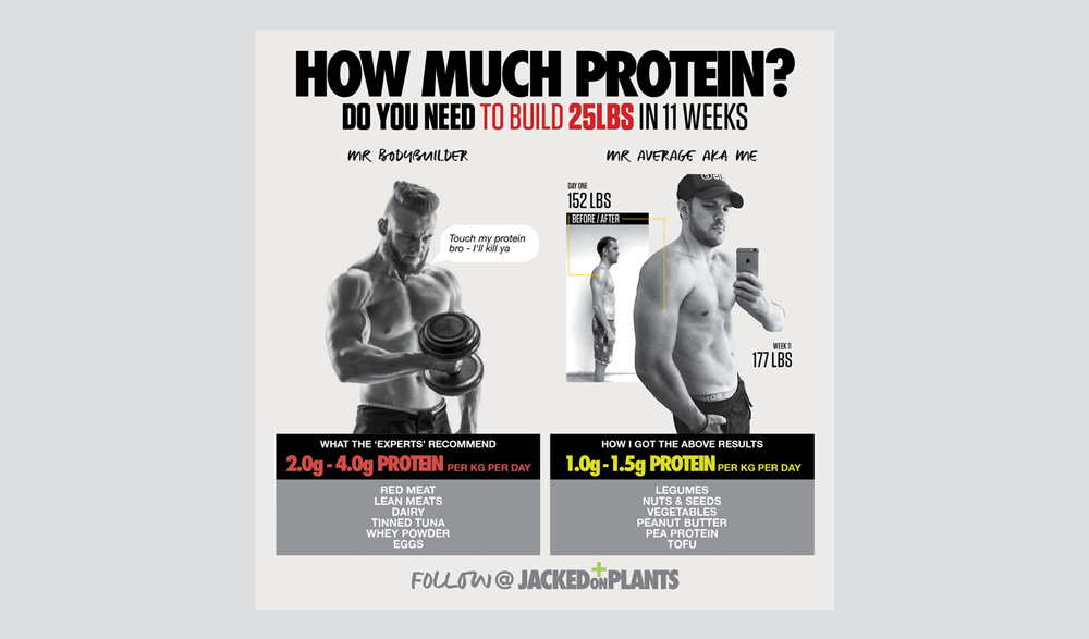 How much protein for vegan bodybuilding