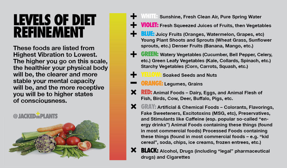 A list of electric foods